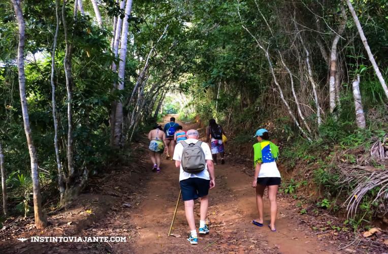 trilha jeribucaçu bahia