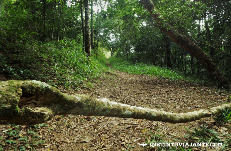 Travessia da Juatinga - Trilha Martim de Sá - Pouso da Cajaíba, em Paraty, RJ
