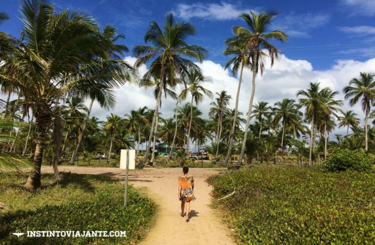Península de Maraú, na baía de Camamu, Bahia.