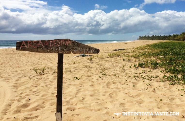 Em toda Península de Maraú é proibido transitar com veículos pela areia, mesmo que sejam quadriciclos. Isso, pois, as praias são habitats de tartarugas marinhas e outros animais.