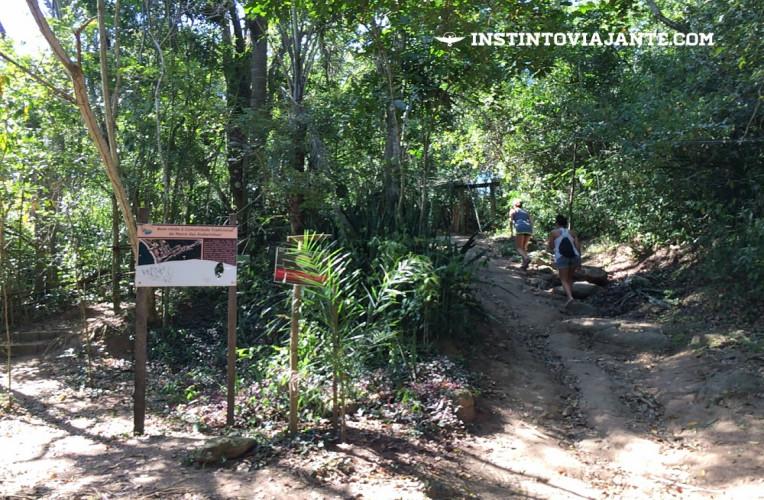 trilha morro das andorinhas itaipu niterói rj