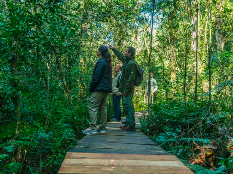 As trilhas do Poço Preto e das Bananeiras são algumas opções extras das Cataratas do Iguaçu brasileira