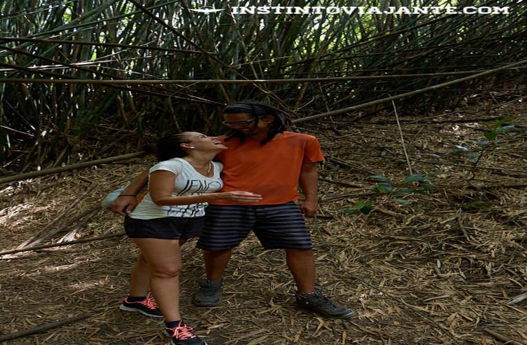 Bambuzal Travessia Tupinamba - Parque da Cidade de Niterói-RJ