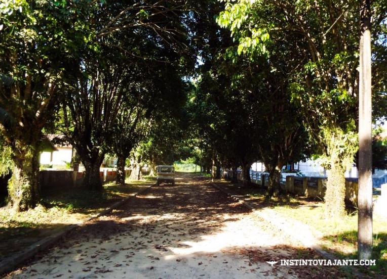Ruazinha em Dois Rios, Ilha Grande/RJ