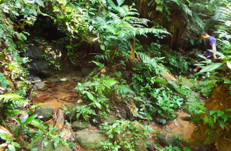 Fonte de água doce no caminho para Martim de Sá