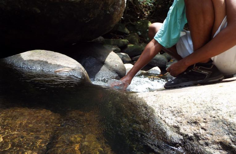 Reabastecendo a água na trilha para o Saco do Céu, Ilha Grande/RJ