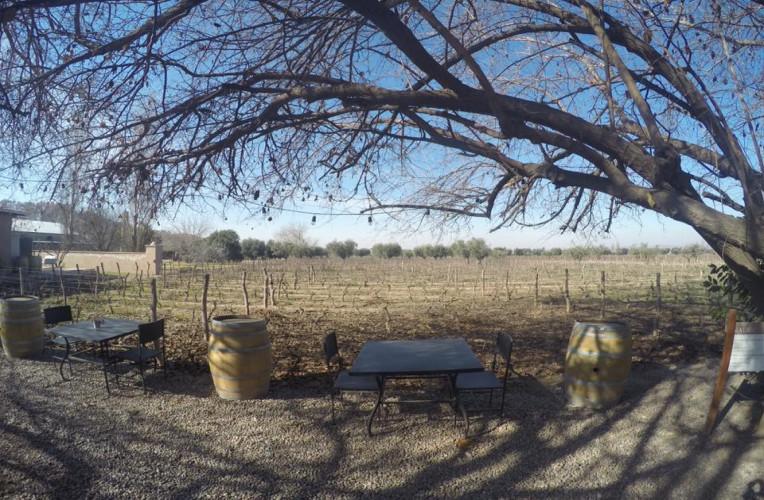 Espaço comum, de frente para os vinhedos, na Bodega Lagarde, em Mendoza - Instinto Viajante