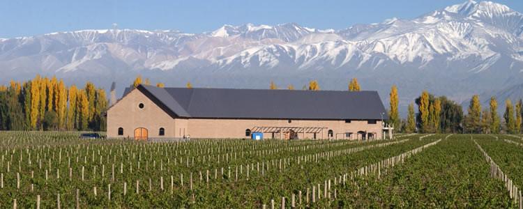 Bodega Dominio del Plata, em Mendoza, Argentina. Foto: inmendoza.com